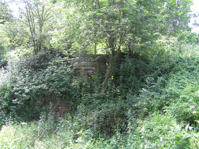 Remains of Nether Wheel, Woodhouse