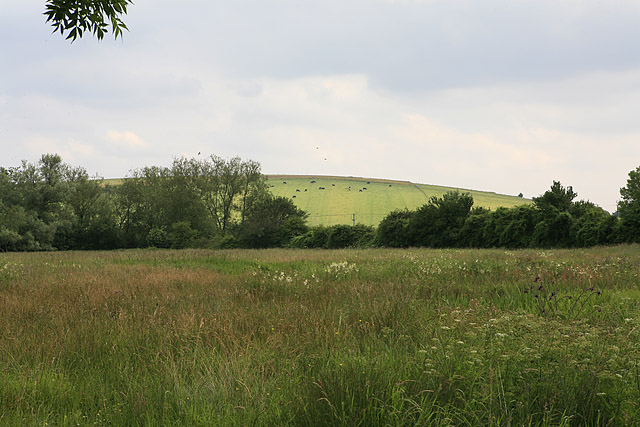 View towards Odstock Down from footpath intersection south of Dogdean Farm
