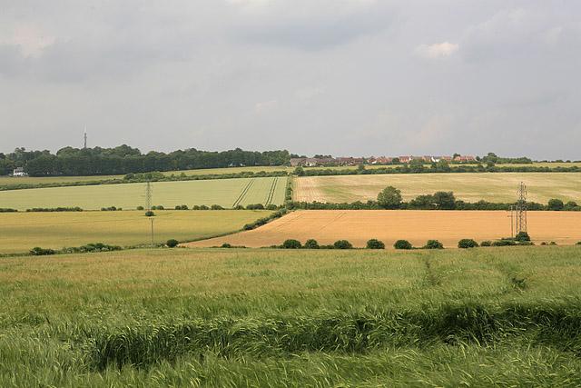 View from Dogdean farm towards Harnham, Salisbury