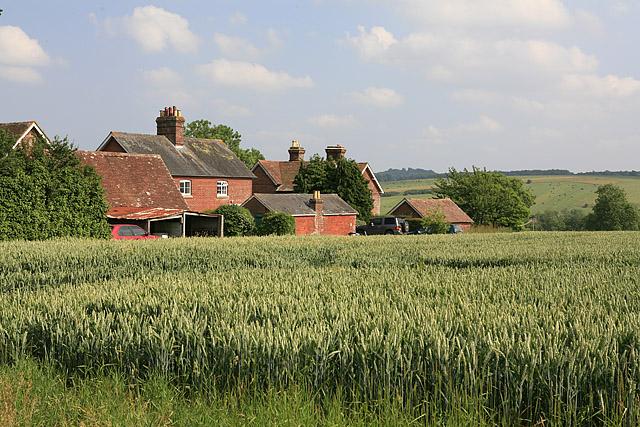 Farm cottages at Dogdean Farm, nr Homington