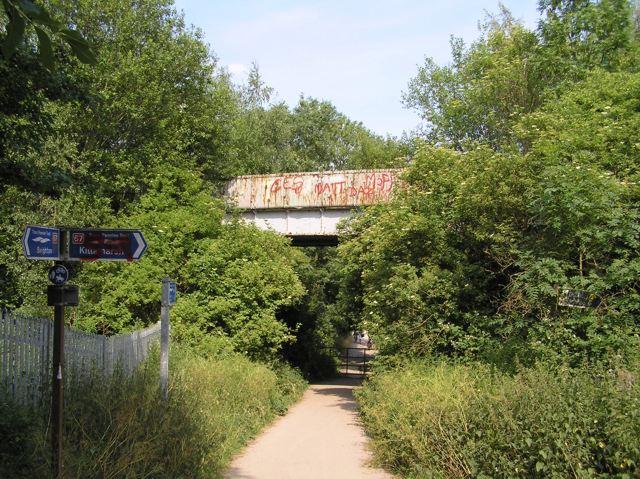 Old railway bridge, Rother Valley Park