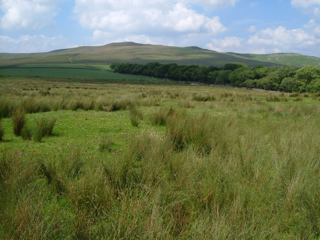 View from Grains Lane towards Kirkby Fell