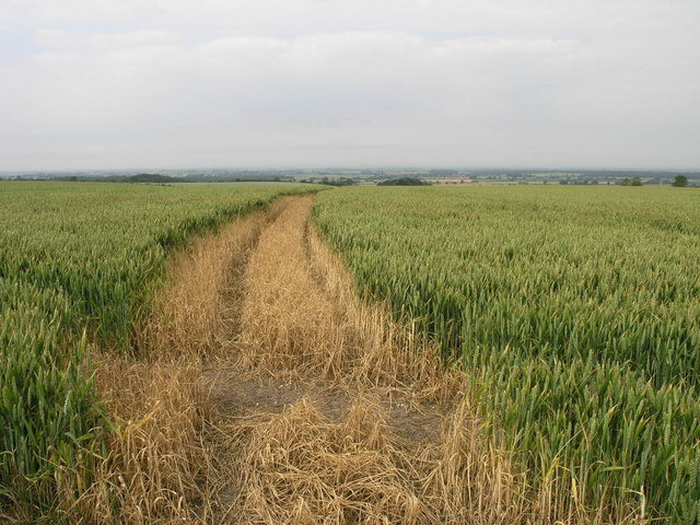Path to Holtham Garrs