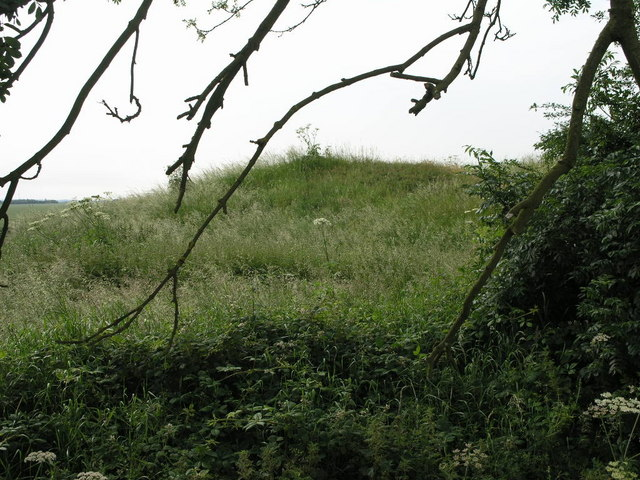Tumulus Through the Tree