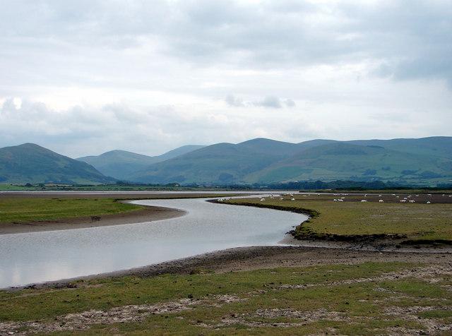 Afon Dysynni & Morfa Gwyllt