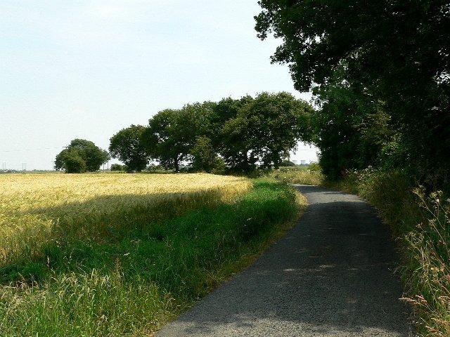 Black Fen Lane