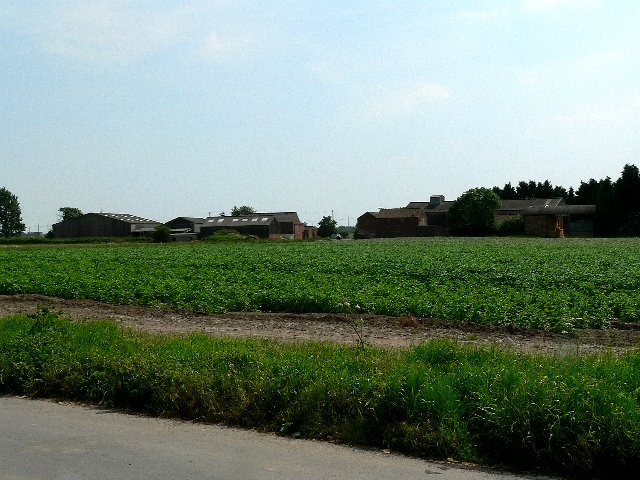 Potato Field and Lodge Farm