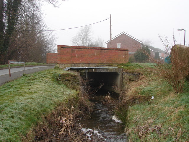 Bridge Over Stream, Caersws