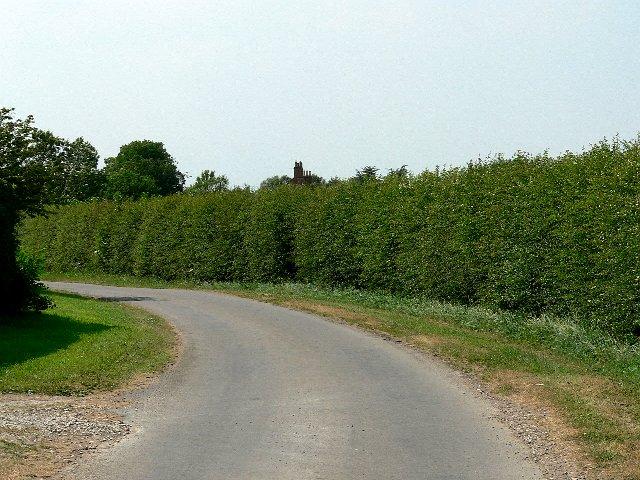 Garman Carr Lane at Richmond Hill