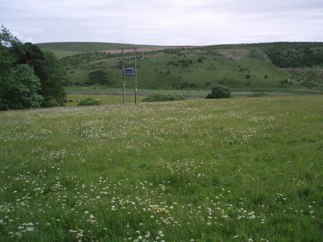 Rural scene at Cranshaws