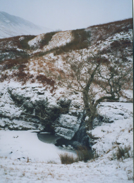 waterfall in Barbondale