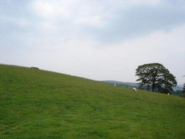 Hills near Llansannan