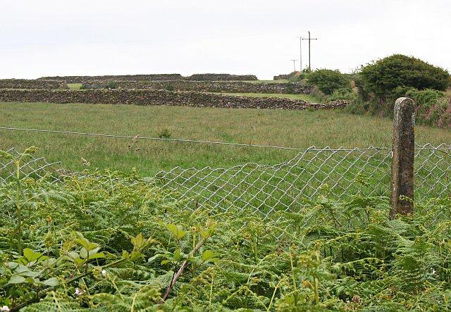 Fields above Stithians Reservoir