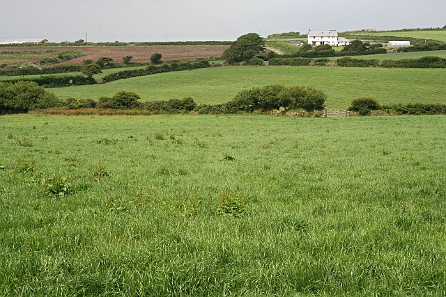 Fields east of Rame Common