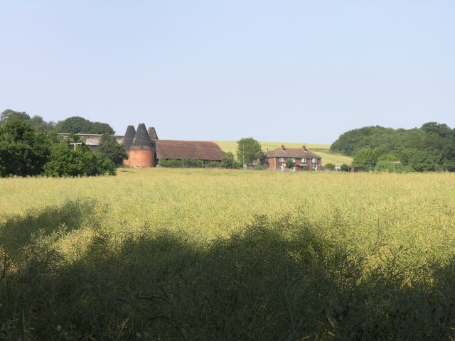 Buston Manor Farm