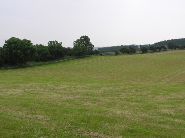 Track to Silverhill Farm