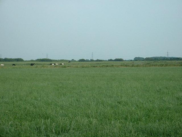 Farmland, Stalmine Moss