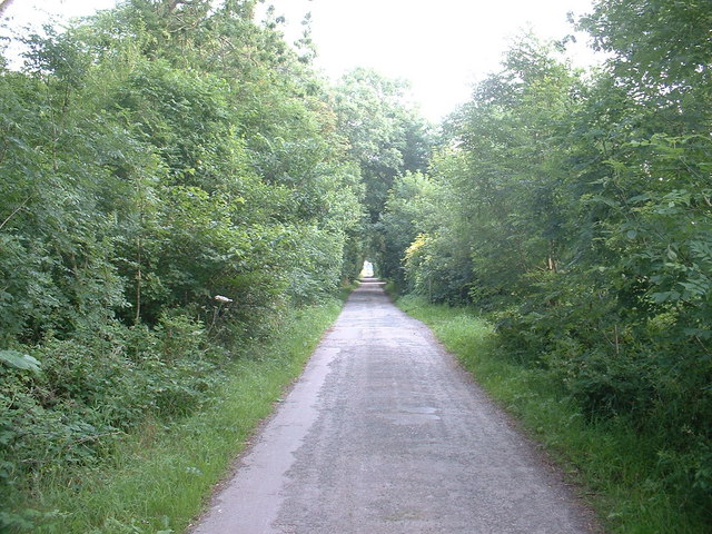 New Lane, Pilling Moss