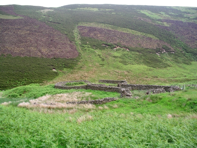 Sheepfolds, Kirkstead burn.