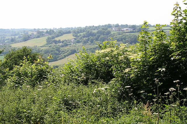 Luppitt: near Hill End Farm