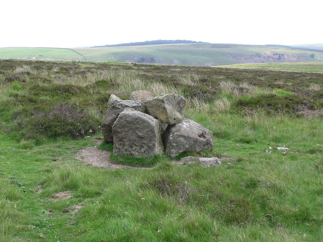 Stones : Holgate Pasture