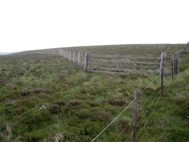 Gate and fence, Deepslack Knowe