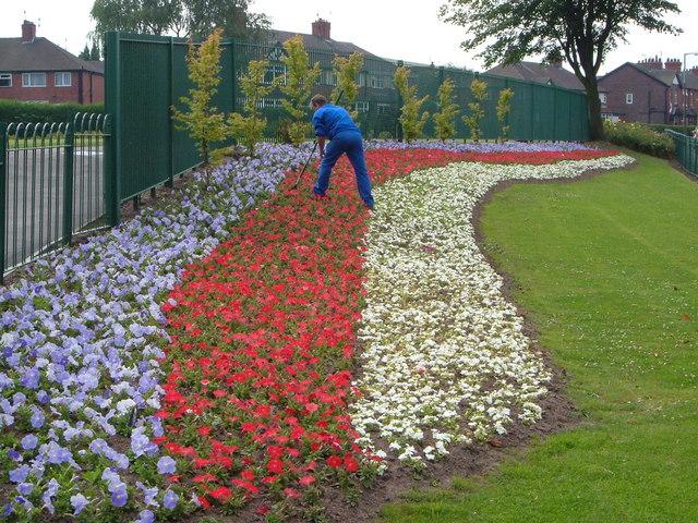 Patriotic flower-bed, Wolstanton Marsh