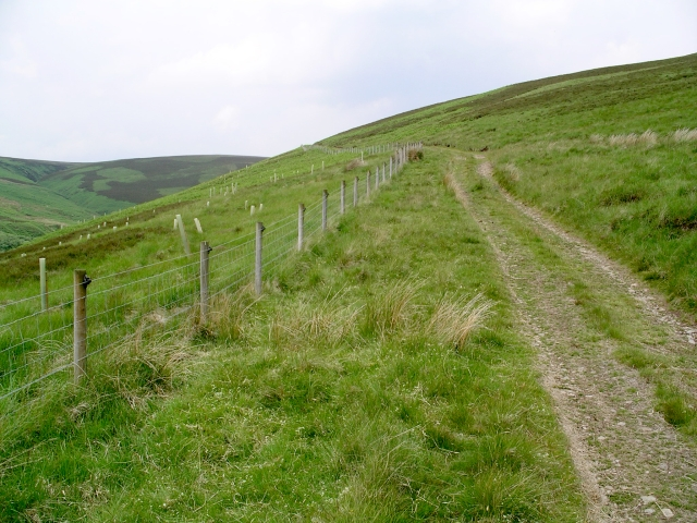 Track and fence, Dryhope valley