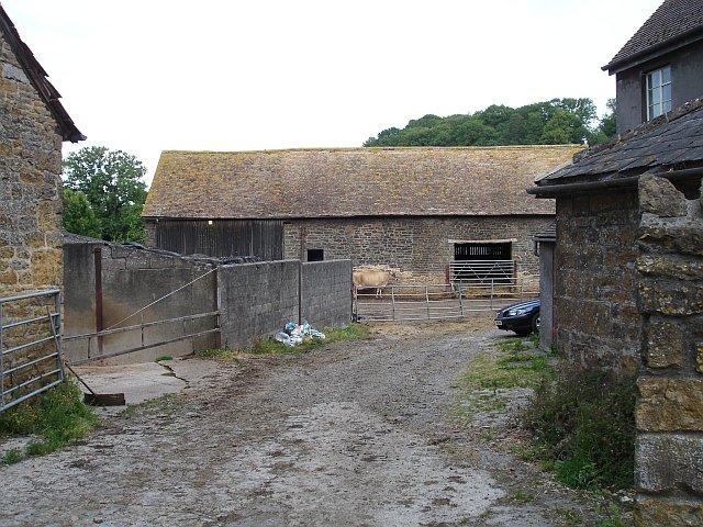 Farmyard in South Cadbury