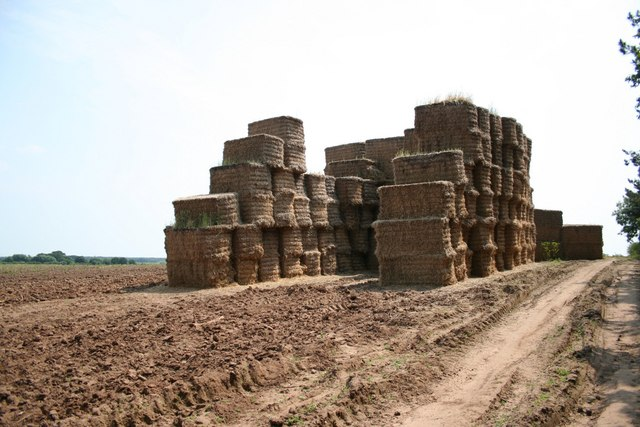 Straw bales off Mill Lane