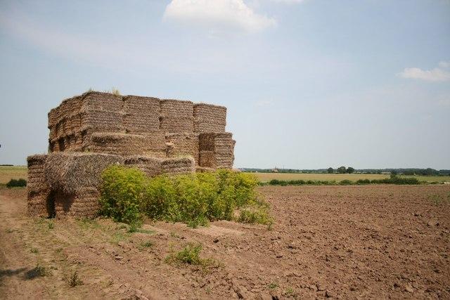 North Clifton farmland
