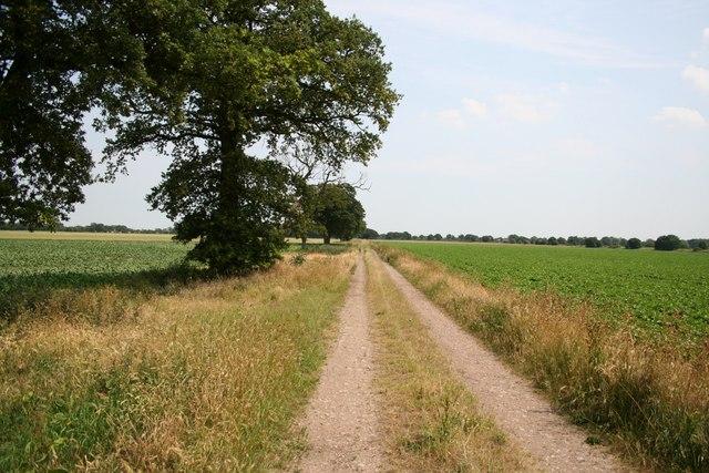 Moor Lane towards Carr Wood