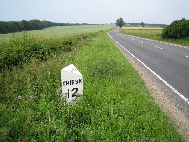 Milepost amongst wild flowers A170 near Helmsley