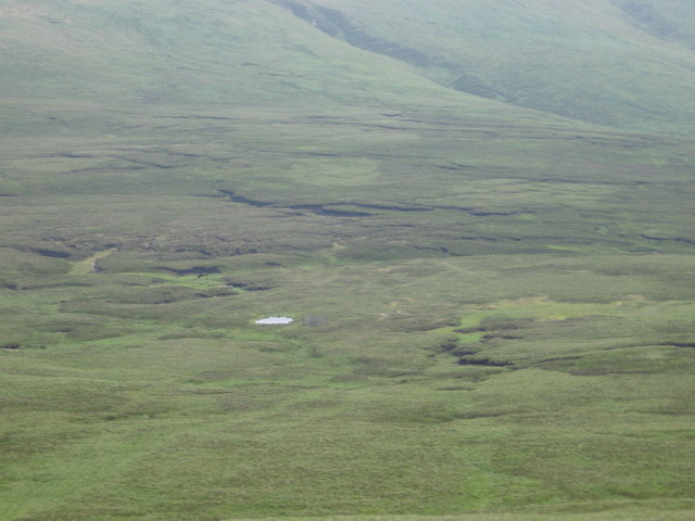 Thick Cleuch Moss