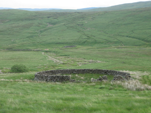 Sheepfold by Howe Cleuch