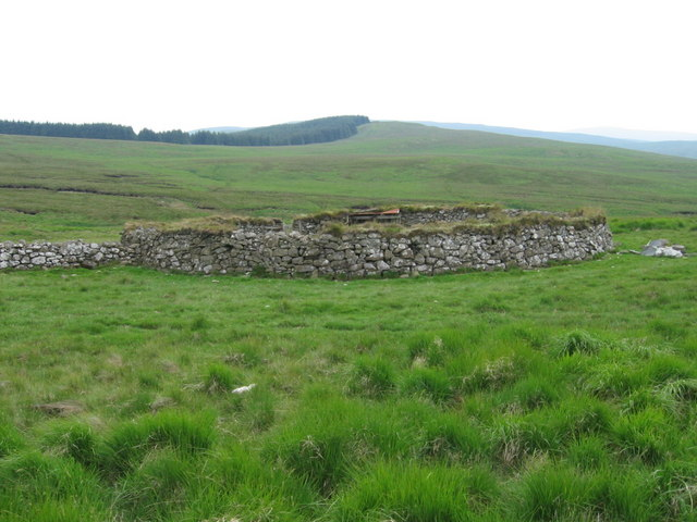 Sheepfold by Shiel Burn