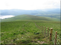 NS9909 : Southern Upland Way on Sweetshaw Brae by Chris Wimbush