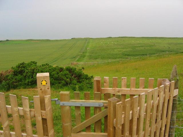 Path to Speeton Sands