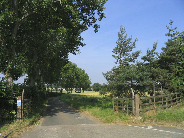 Tree-lined drive to Quarry Hill Farm
