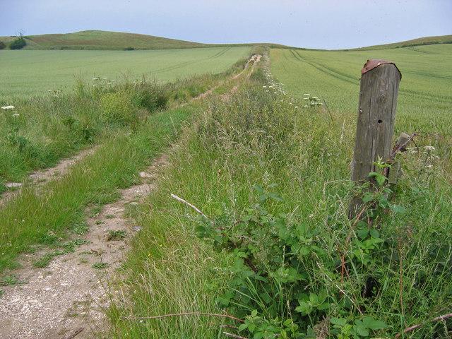 Track West of Speeton