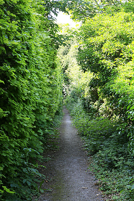 Footpath from Bouverie Avenue to Old Blandford Road, Salisbury