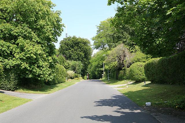 Old Blandford Road, Salisbury