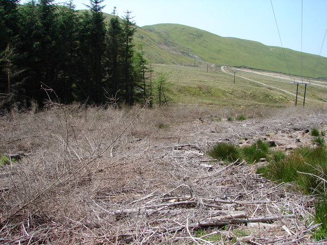 Cleared Forestry In Dyll Faen