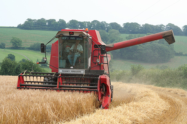 Cullompton: harvesting at Colebrook