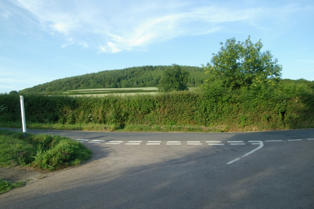 Buckton Hill, Sidbury