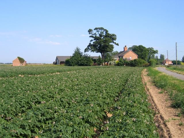 Manor Farm, Frampton, Lincs