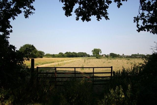 Houcham Farm from New Lane