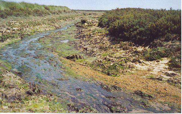 Salt Marsh Channel, by Gore Saltings.