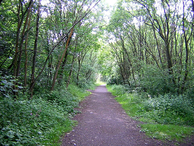 Cycleway in Milton of Campsie