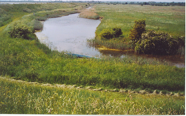 Salt Marsh Channel by Thistly Creek.